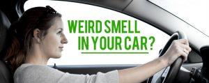 Bau Aneh Pada Mobil
